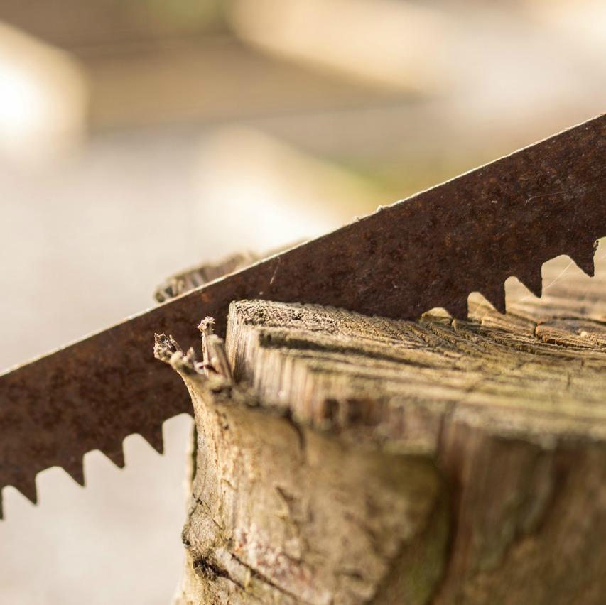 Motosierras y herramientas de leña
